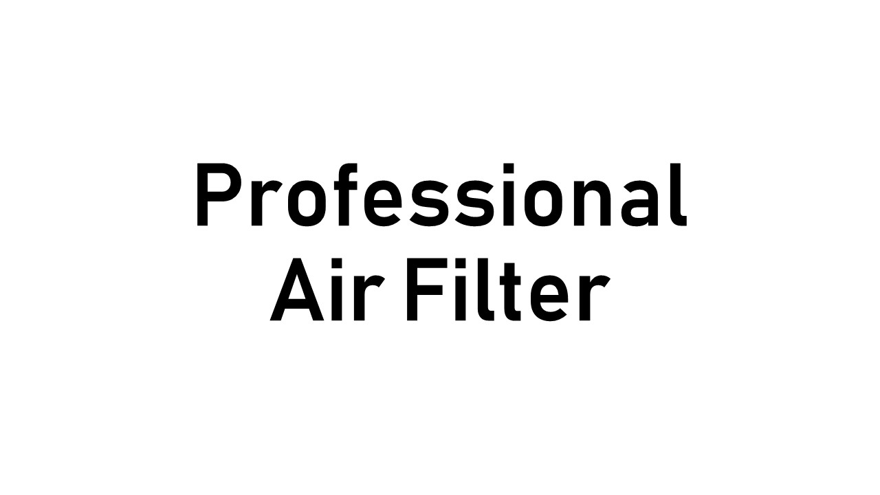 Professional Air Filter